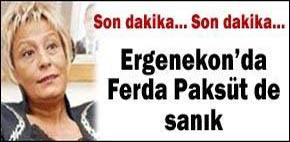http://dosyalar.hurriyet.com.tr/haber_resim/ferdapaksut_iddianame.jpg