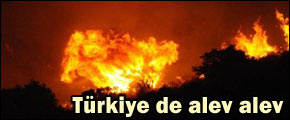 http://dosyalar.hurriyet.com.tr/haber_resim/turkiye_yangin.jpg